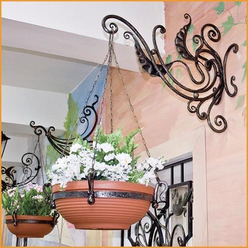 цветы первоцветы фото с описанием